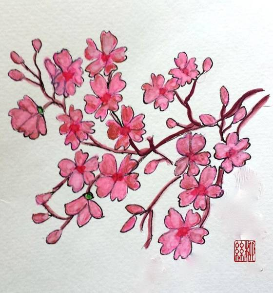 Painting - Cherry Blossom by Margaret Welsh Willowsilk