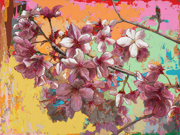 Pink Blossom Painting - Cherry Blossoms #5 by David Palmer