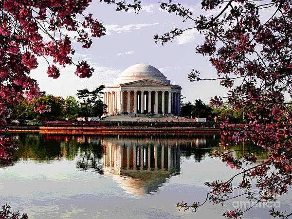 Cherry Blossoms At Jefferson Memorial Art Print