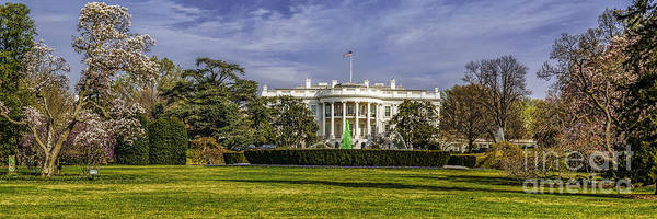 Wall Art - Photograph - Cherry Blossoms At The White House by Nick Zelinsky