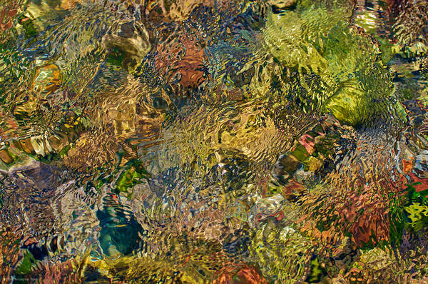 Photograph - Cherry Creek Water Abstract by Britt Runyon