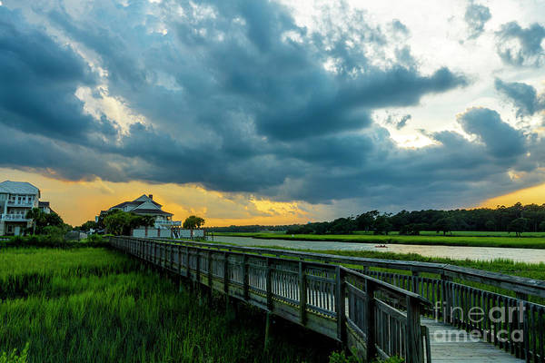 Cherry Grove Channel Marsh Art Print
