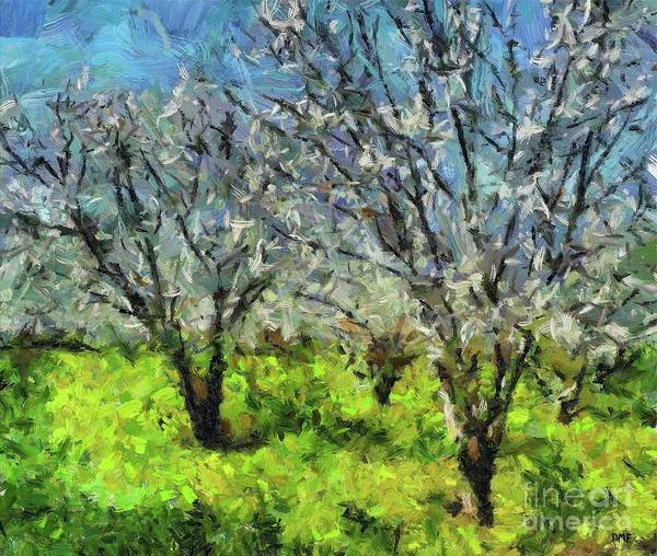 Wall Art - Painting - Cherry Orchard by Dragica Micki Fortuna