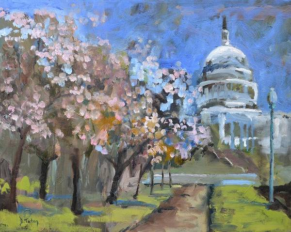 Mall Painting - Cherry Tree Blossoms In Washington Dc by Donna Tuten