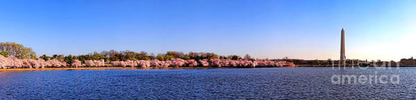 Wall Art - Photograph - Cherry Trees On The Tidal Basin And Washington Monument  by Olivier Le Queinec