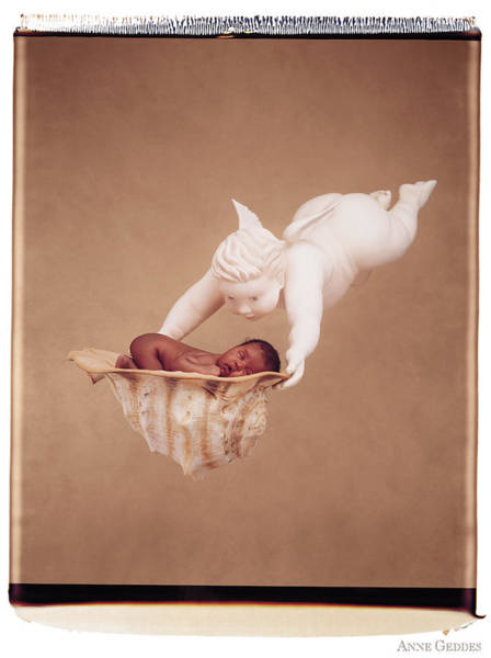 Wall Art - Photograph - Cherub Holding Dominique by Anne Geddes