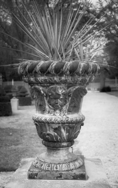 Royal Colony Photograph - Cherub Planter B W by Teresa Mucha