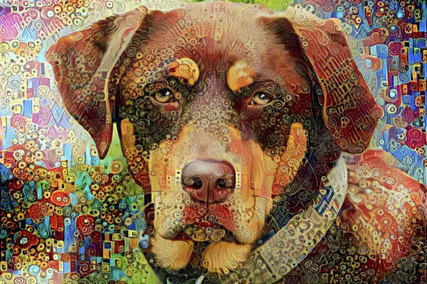 Photograph - Chester The Abstract Mutt  by Peggy Collins