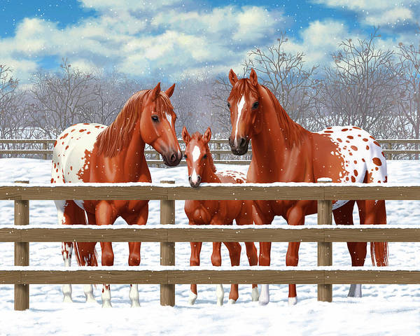 Wall Art - Painting - Chestnut Appaloosa Horses In Snow by Crista Forest