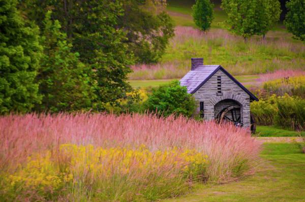 Chestnut Hill Photograph - Chestnut Hill - Morris Arboretum - Philadelphia by Bill Cannon