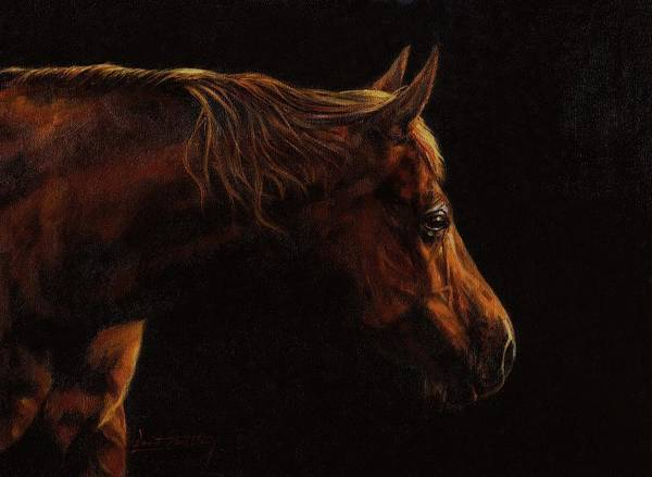 Chestnut Horse Painting - Chestnut Horse Portrait by David Stribbling