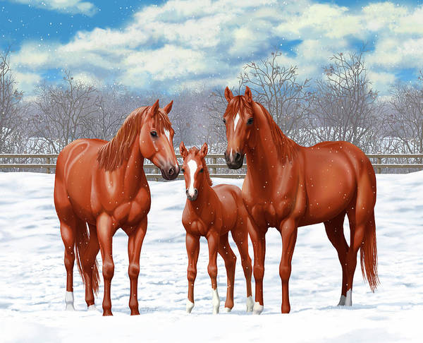 Wall Art - Painting - Chestnut Horses In Winter Pasture by Crista Forest