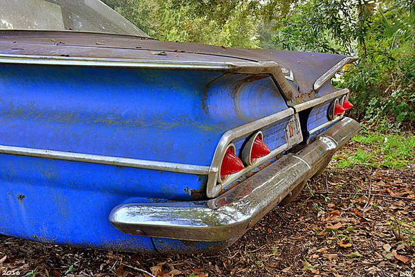 Photograph - Chevrolet Bel Air Back Side by Lisa Wooten