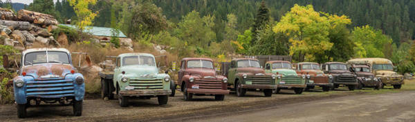 Photograph - Chevy Line Up by Jean Noren