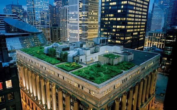 Skyline Digital Art - Chicago City Hall by Super Lovely