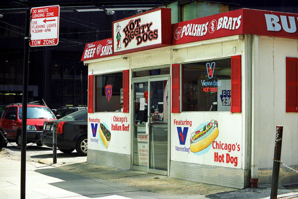 Photograph - Chicago Dogs by Frank Romeo