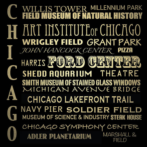 Shed Digital Art - Chicago Illinois Famous Landmarks by Patricia Lintner