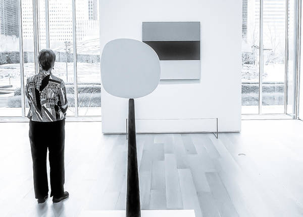 Photograph - Chicago Mca 2014 by Frank Winters