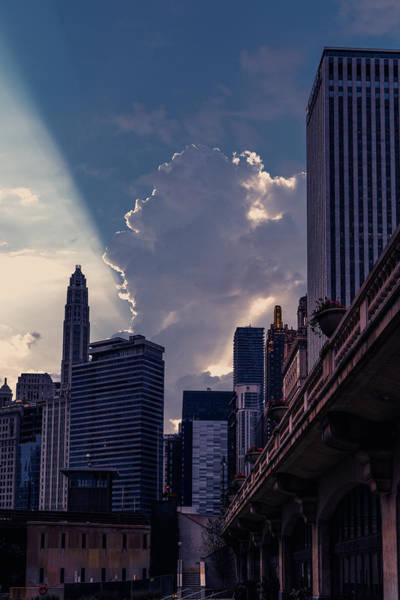 Photograph - Chicago Morning by Nisah Cheatham