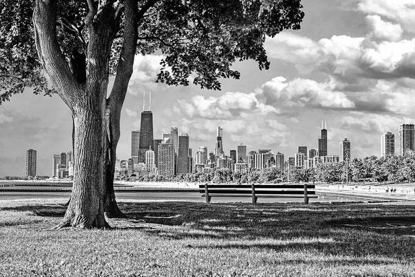 Park Bench Photograph - Chicago North Skyline Park Black And White by Christopher Arndt