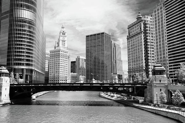 Sears Tower Photograph - Chicago River Buildings Skyline by Paul Velgos