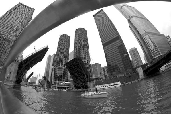 Photograph - Chicago Sailboats Heading To Harbor by Sven Brogren