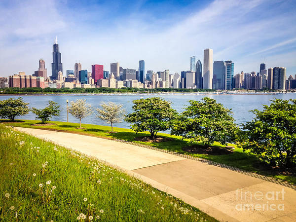 Sears Tower Photograph - Chicago Skyine And Lakefront Trail by Paul Velgos