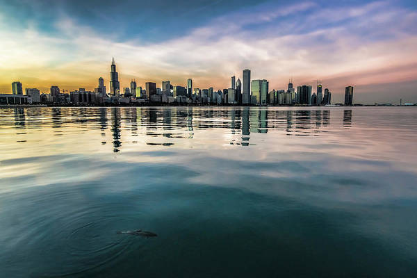 Photograph - Chicago Skyline And Fish At Dusk by Sven Brogren