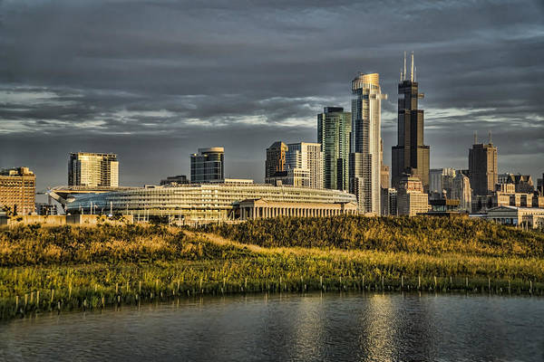 Photograph - Chicago Skyline And Nature Preserve At Sunrise by Sven Brogren