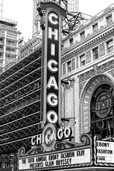 Photograph - Chicago Theater 2008 by John Rizzuto