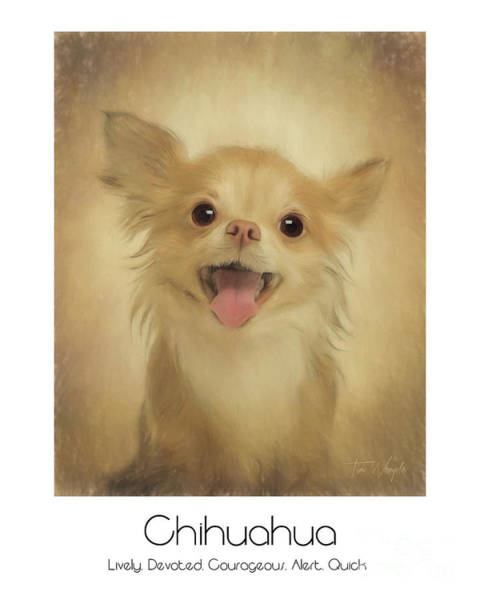 Digital Art - Chihuahua Poster by Tim Wemple