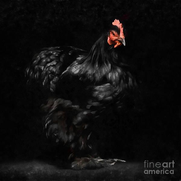 Wall Art - Digital Art - Chicken Painting by Edward Fielding