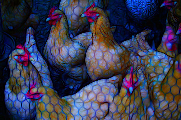 Chicken Feet Photograph - Chicken Sisters One by Shirley Sykes Bracken