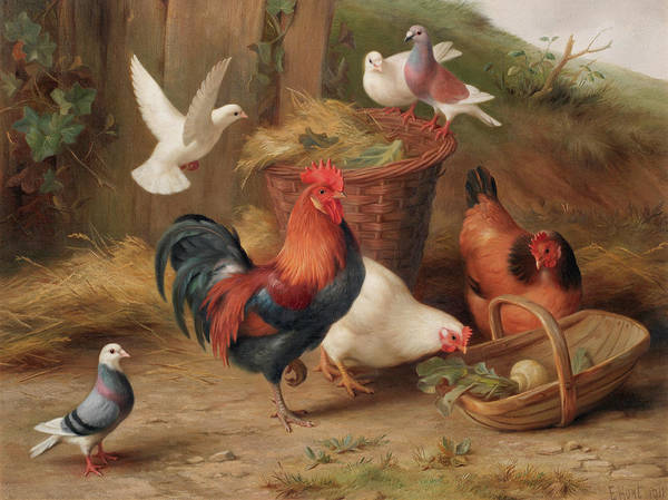 Breeding Painting - Chickens And Doves By A Wicker Basket And Trug by Edgar Hunt