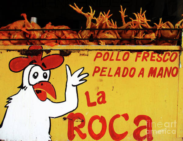 Chicken Feet Photograph - Chickens In Mexico by Randall Weidner