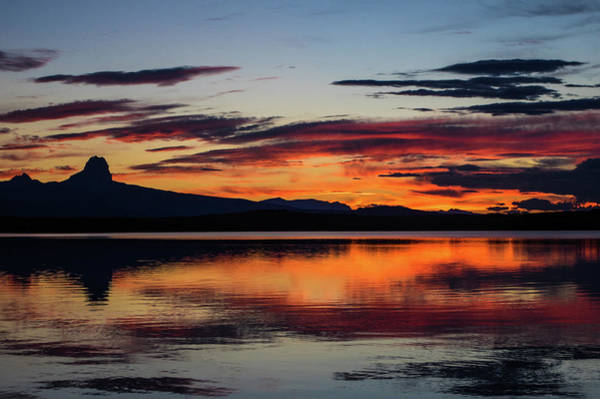 Photograph - Chief Mountain Sunset by Jedediah Hohf