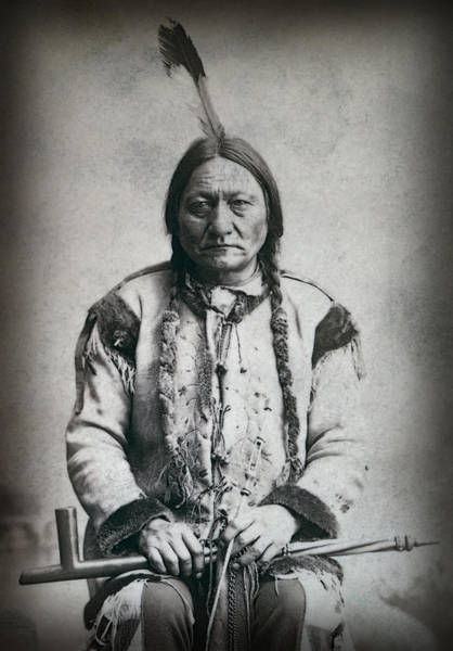 Sitting Bull Photograph - Chief Sitting Bull 1884 by Daniel Hagerman