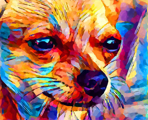 Wall Art - Painting - Chihuahua 2 by Chris Butler