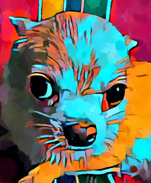 Wall Art - Painting - Chihuahua 4 by Chris Butler
