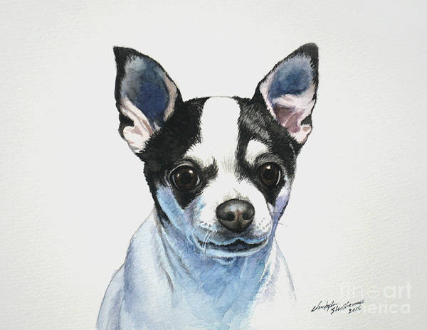 Painting - Chihuahua Black Spots With White by Christopher Shellhammer