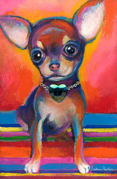 Chihuahua Dog Portrait Art Print