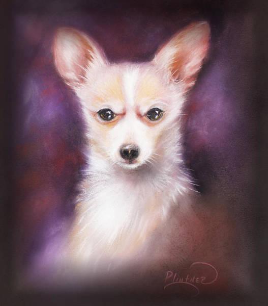 Wall Art - Drawing - Chihuahua No. 1 by Patricia Lintner