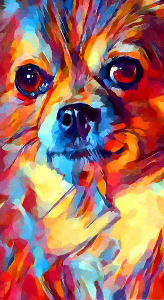 Wall Art - Painting - Chihuahua Watercolor by Chris Butler