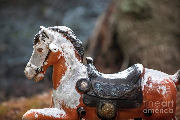 Photograph - Child Bouncy Horse by Dale Powell