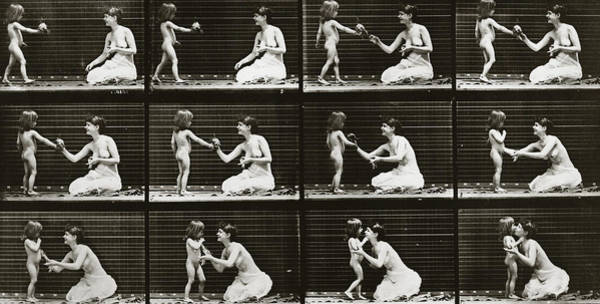 Posies Photograph - Child Bringing Bouquet To A Woman, Plate 465 From Animal Locomotion, 1887  by Eadweard Muybridge
