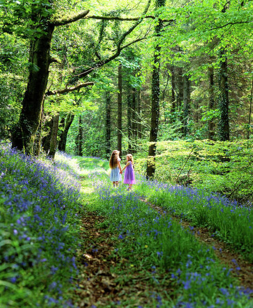 Photograph - Children In Bluebell Woods by Maggie McCall