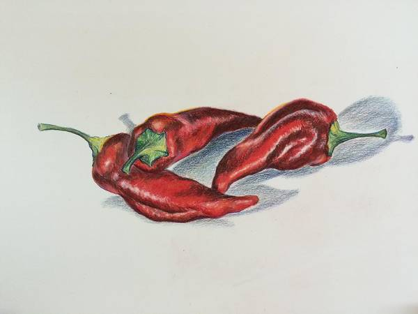 Chile Peppers Art Print