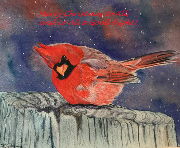 Chilly Bird Christmas Card Art Print