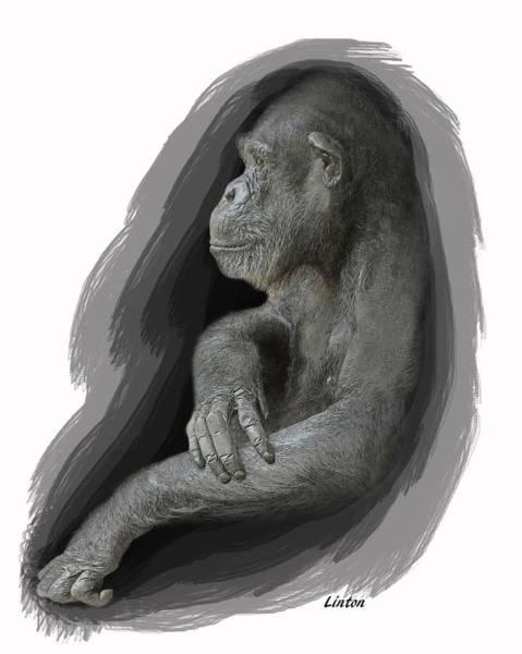 Digital Art - Primate Profile by Larry Linton