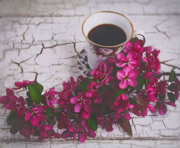 Photograph - Chinaberry Blossoms And Coffee Cup by Anna Louise